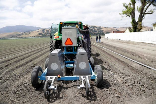 In this May 23, 2013, photo, field operations manager Matthew Rossow tests the lettuce bot in Salinas, Calif. In the Salinas Valley, the lettuce capital of the world, entrepreneurs with the Silicon Valley company Blue River Technology are testing the Lettuce Bot, a boxy robotic machine that can thin fields of lettuce, a job that now requires detailed hand work by 20 farm workers. Photo: Marcio Jose Sanchez