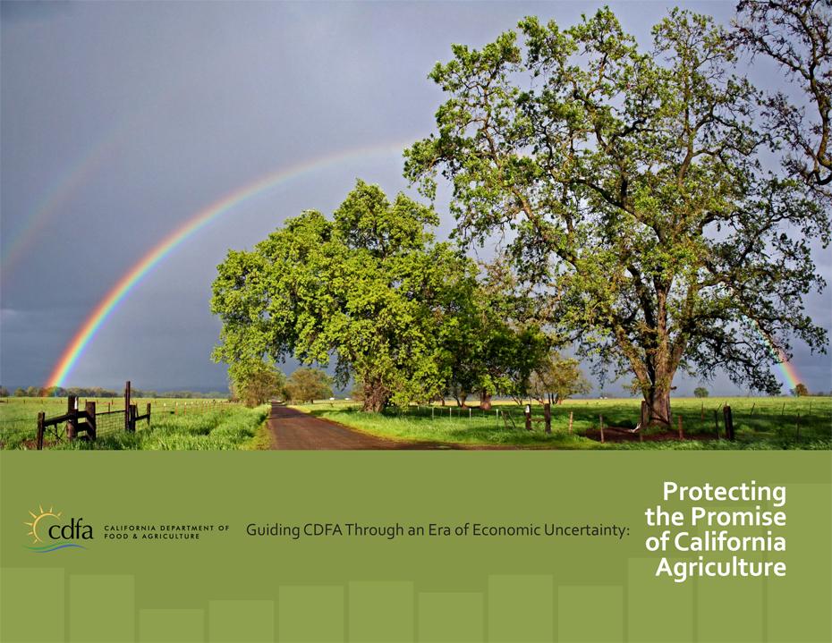 CDFA Report Cover