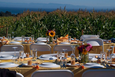 farm-to-fork.tables-375