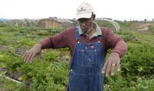 Fresno farmer Rodney Wells.