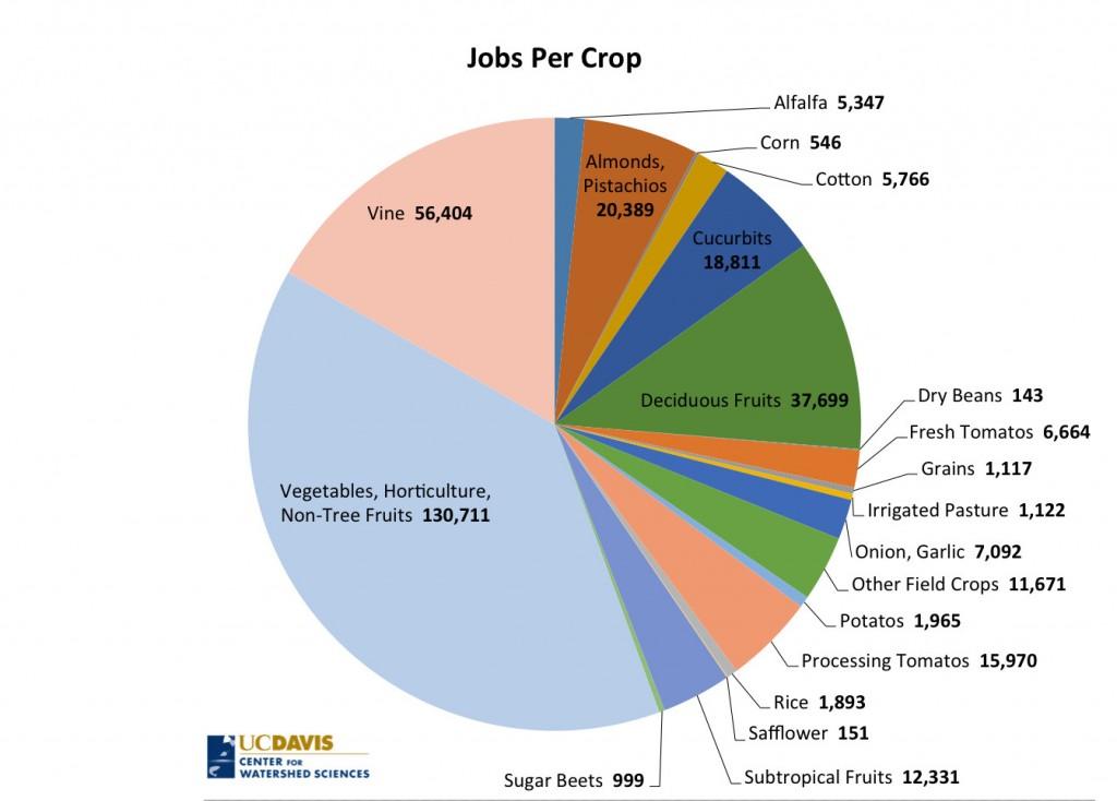 Pie Chart of Jobs Per Crop