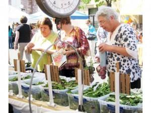 senior citizens at farmers market