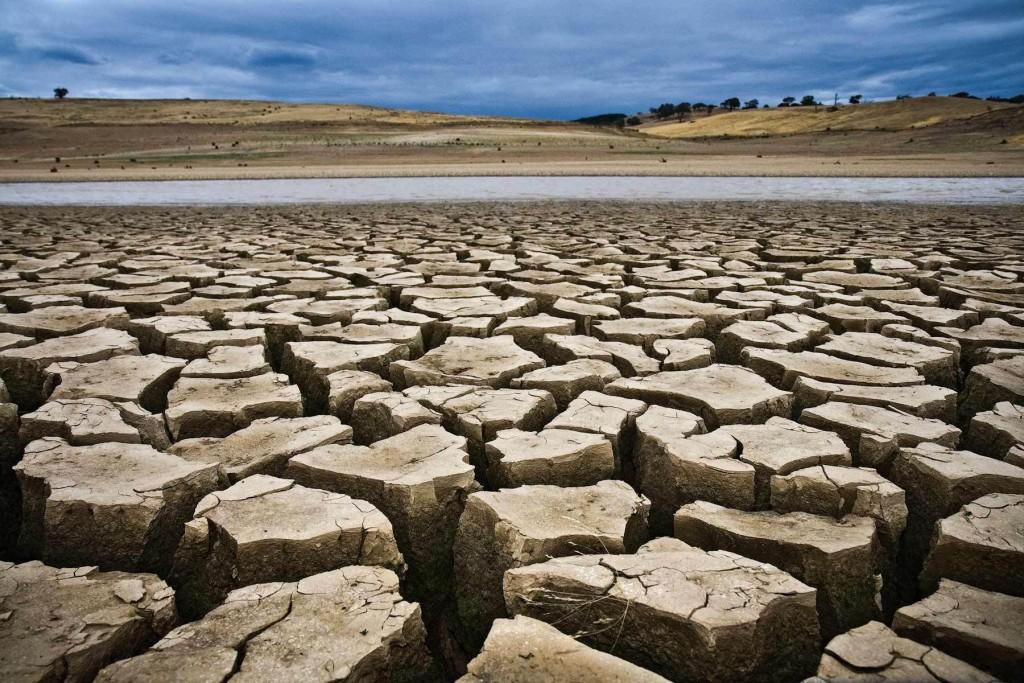 Cracked Dry Land