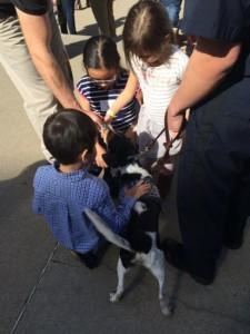 The USDA's Beagle Brigade meets an adoring public.