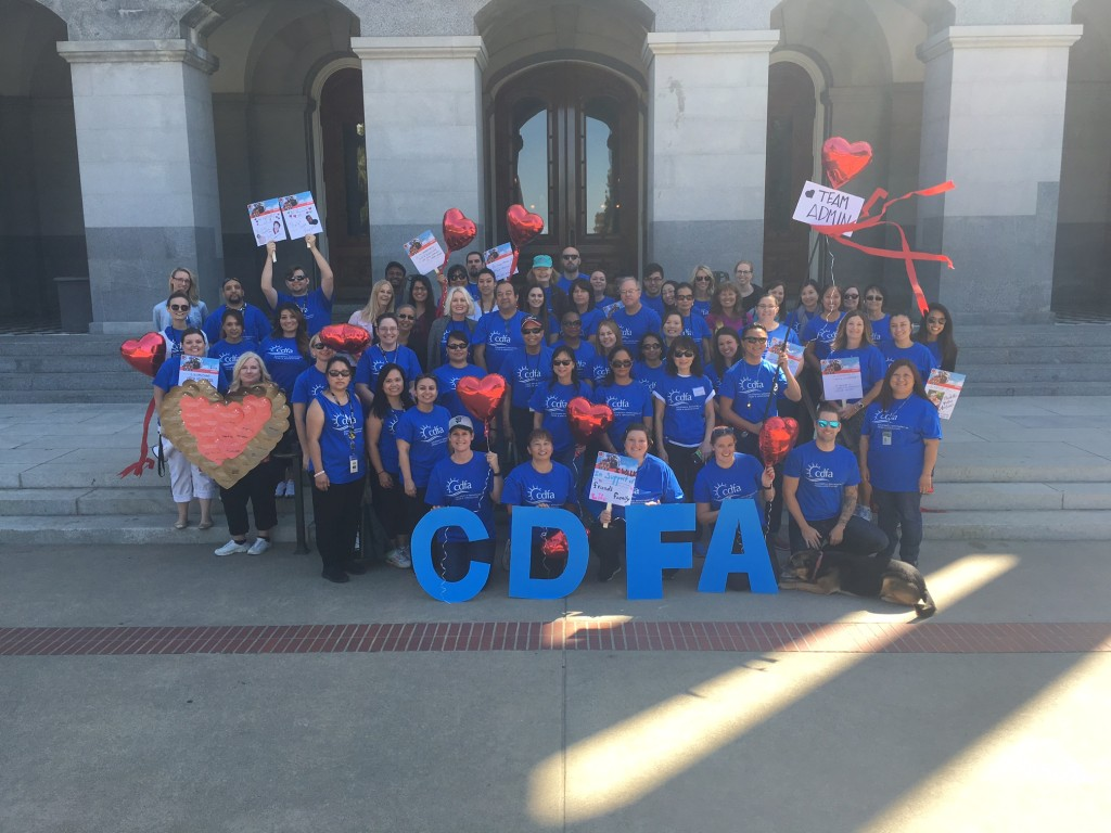 CDFA employees gathered at the State Capitol today for the American Heart Associations's Heart Walk. A total of 140 Department employees participated, raising $2.814 for heart health.
