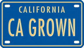 CA GROWN