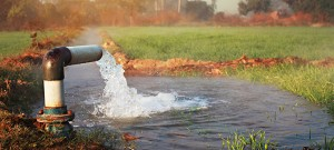 Water is flowing from a large pipe into an irrigation canal. The focus is on the water coming out of the pipe. There is wheat crop and trees in the back ground and they are blurred.