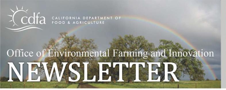 OEFI Newsletter