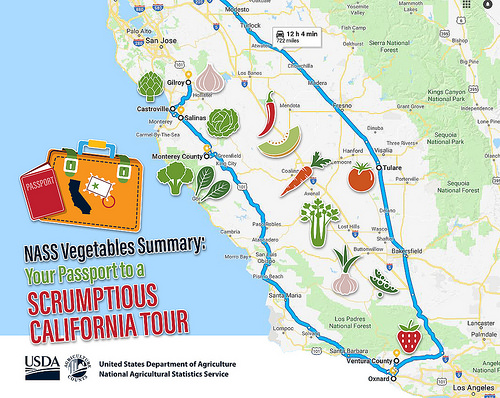 NASS Vegetables Summary: Your Passport to a Scrumptious California Tour