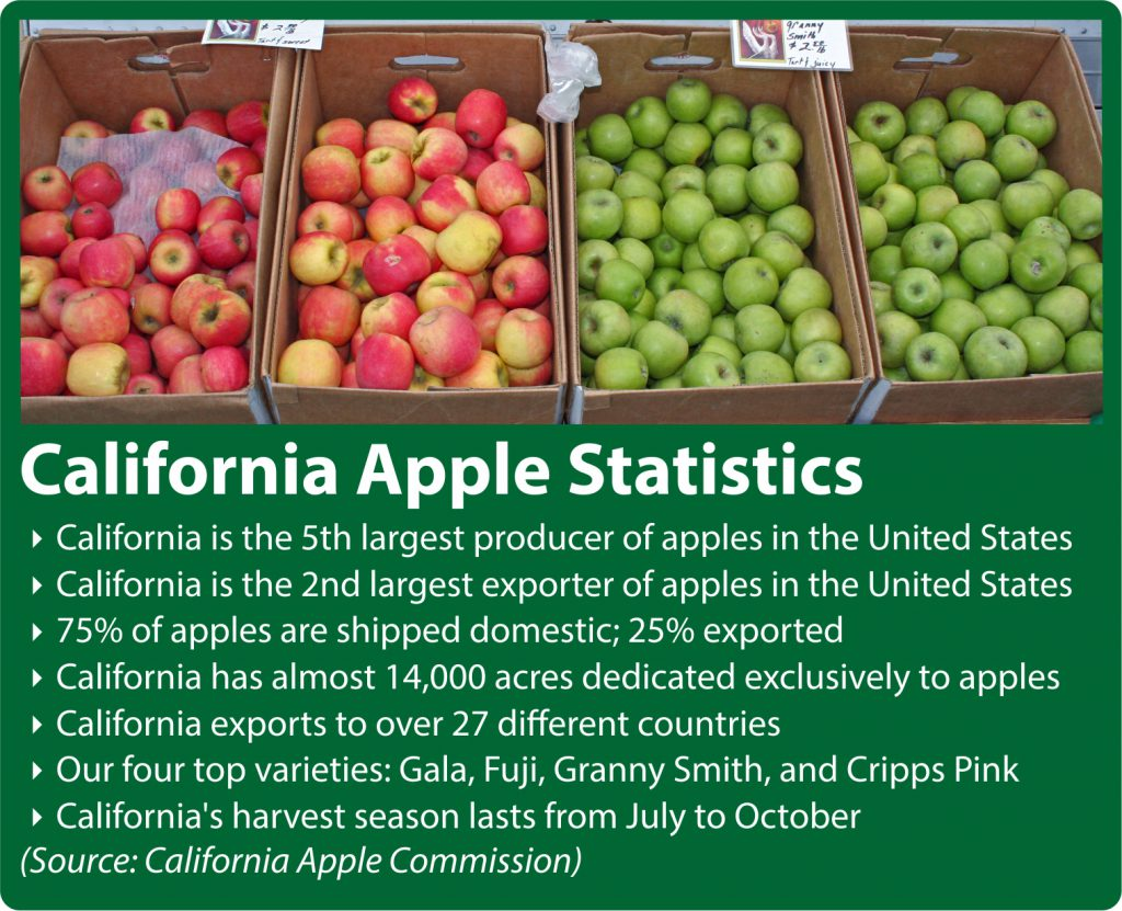 California Apple Statistics
