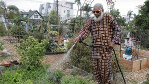 Ibrahim Fardan, one of the directors of Juniper Front Community Garden in San Diego, waters plants in his plot