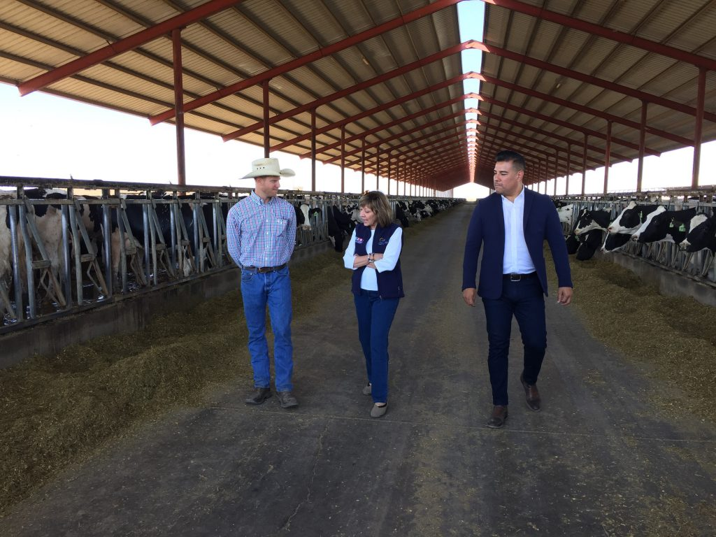 A photograph of CDFA Secretary Karen Ross touring an open-sided dairy cow barn at Open Sky Dairy in West Fresno with dairyman Eric TeVelde and Senator Ricardo Lara.