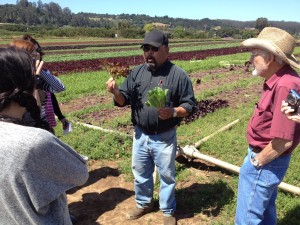 Arturo Sanchez (center) and Rod Faurot, of Faurot Farms in Watsonville, show two different types of leaf lettuce to a group of visiting Canadian writers and food experts