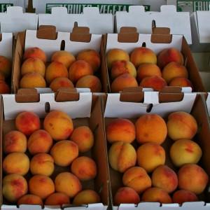 Crates of peaches