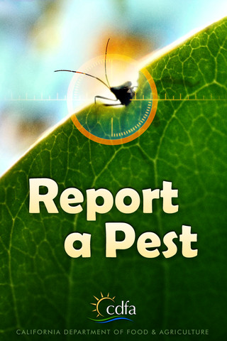 Report a Pest iOS app