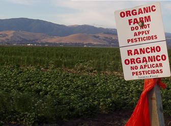 Sign reading ORGANIC FARM DO NOT APPLY PESTICIDES