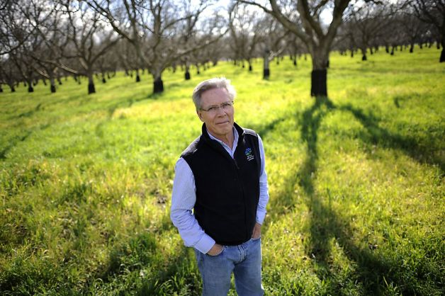 Craig standing in an orchard