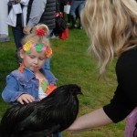 A little girl pets a black chicken on Ag Day