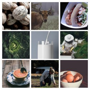 Montage of various agricultural subjects