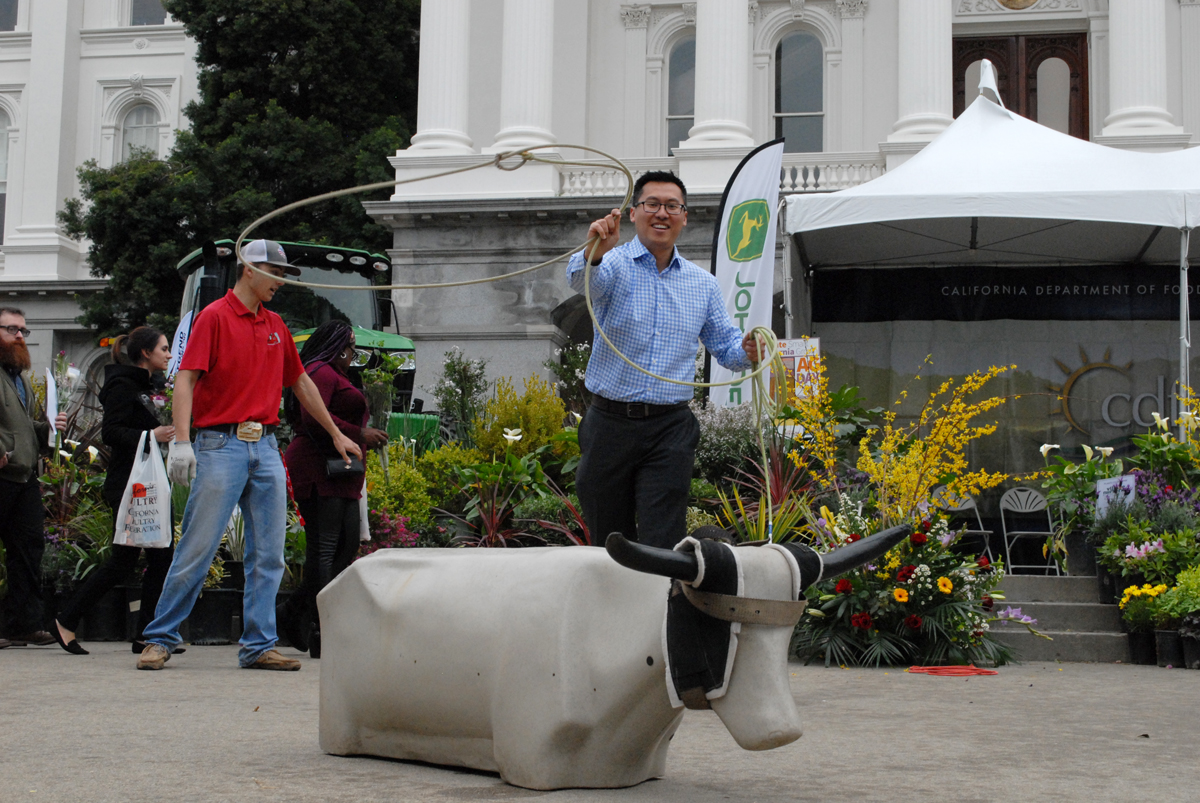 Assemblymember Vince Fong practices lasso on a dummy cow