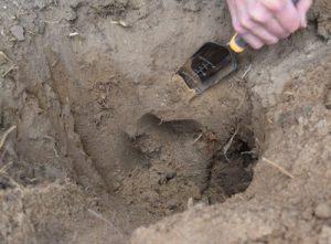 Exploring the soil with a spade