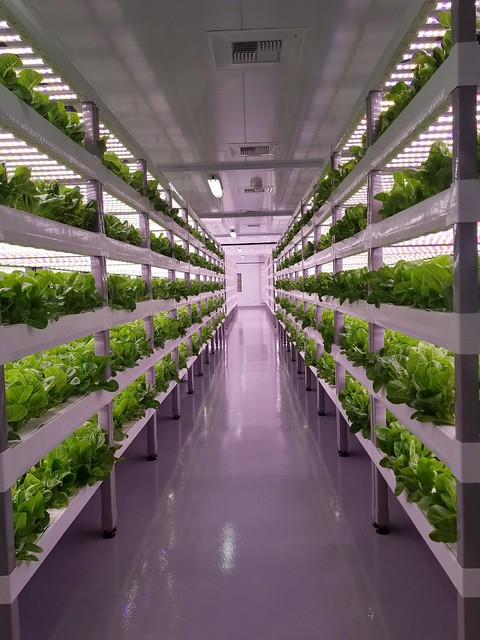 Vertical farming facility