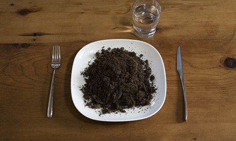 Soil on a plate.