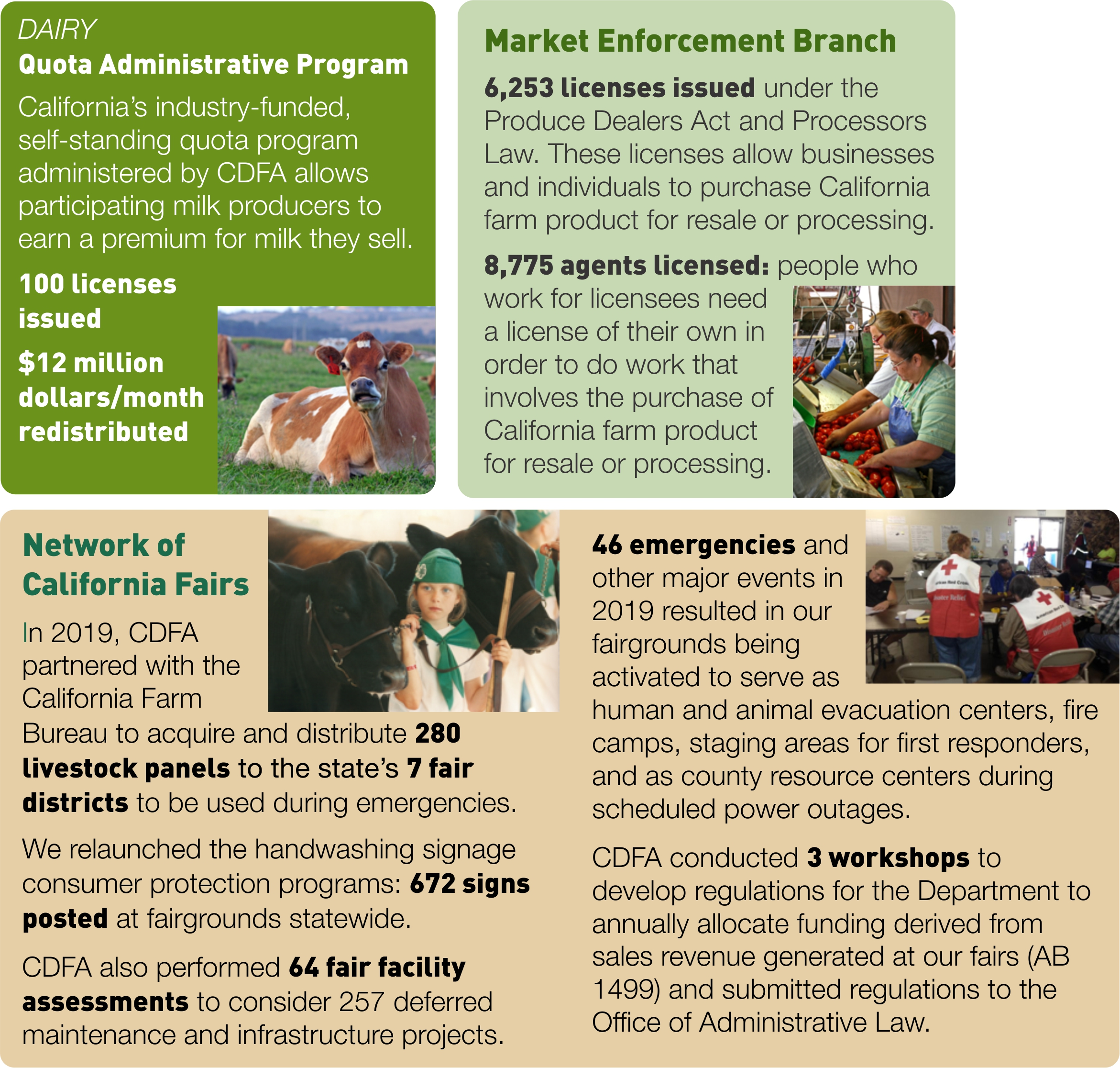 Infographic with details about CDFA's dairy-related Quota Administrative Program, licensing activities of the Market Enforcement Branch, and projects at the Network of California Fairs